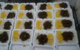 پخت و توزیع غذای گرم مرحله چهل و یک